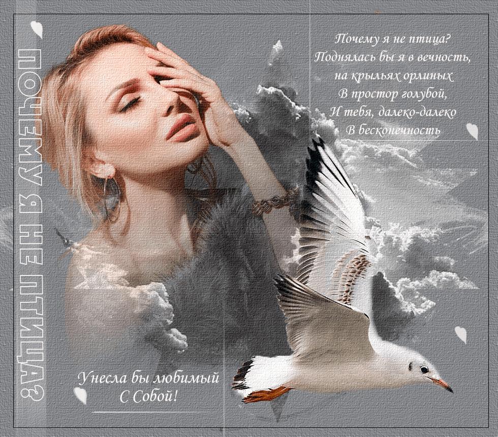Мария Клочкова http://www.fashionbank.ru/photo/2123983.html + https://www.nastol.com.ua/download/83272/1920x1080/ + кисти, маски фотошоп + птицы пнг https://www.nastol.com