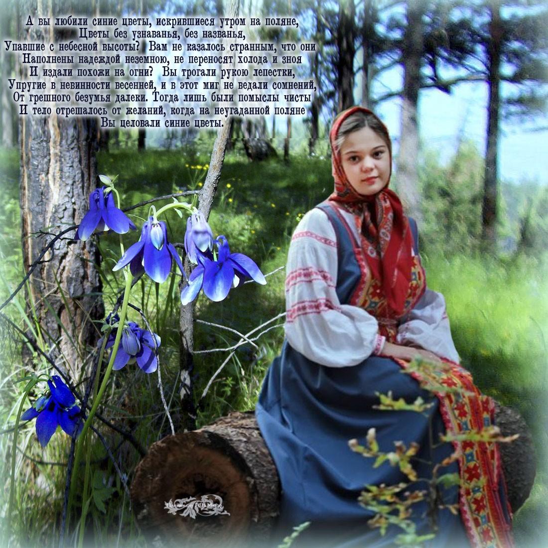 1 Синие цветы