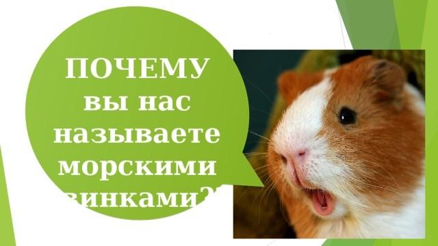 img user file 56a8e976d9b83 2