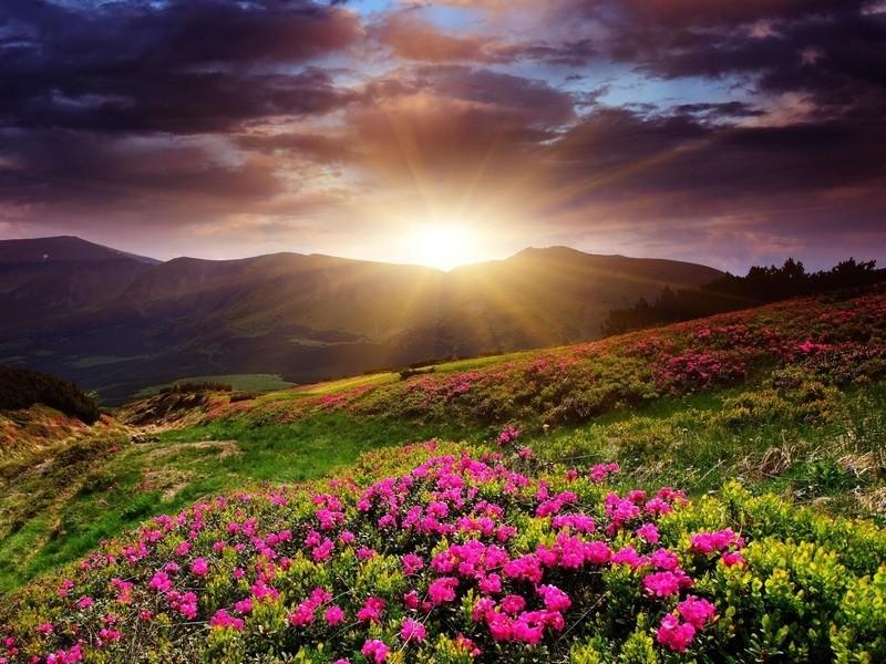 Солнце из за гор