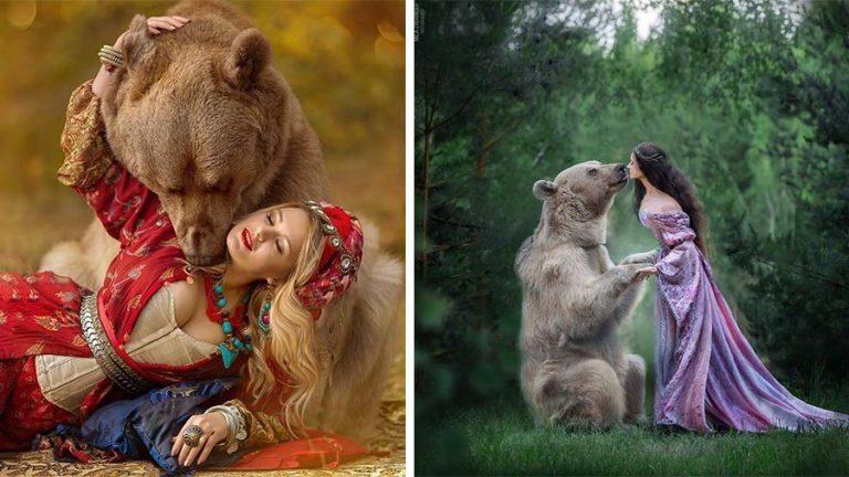 8974buryj medved iz rossii kotorogo v detstve brosila mat iz