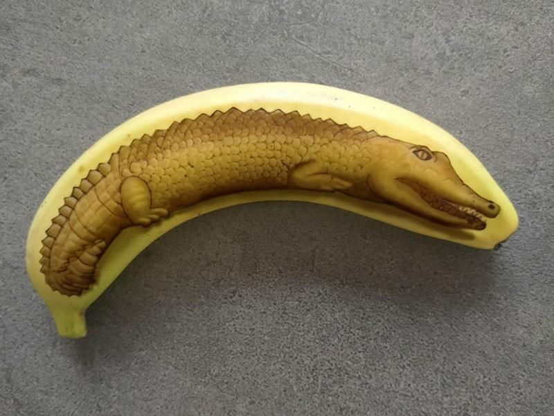 banana art by anna chojnicka 004