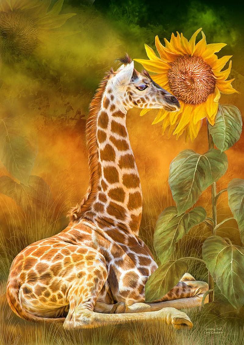 Цифровая живопись Кэрол Каваларис. Животные и птицы