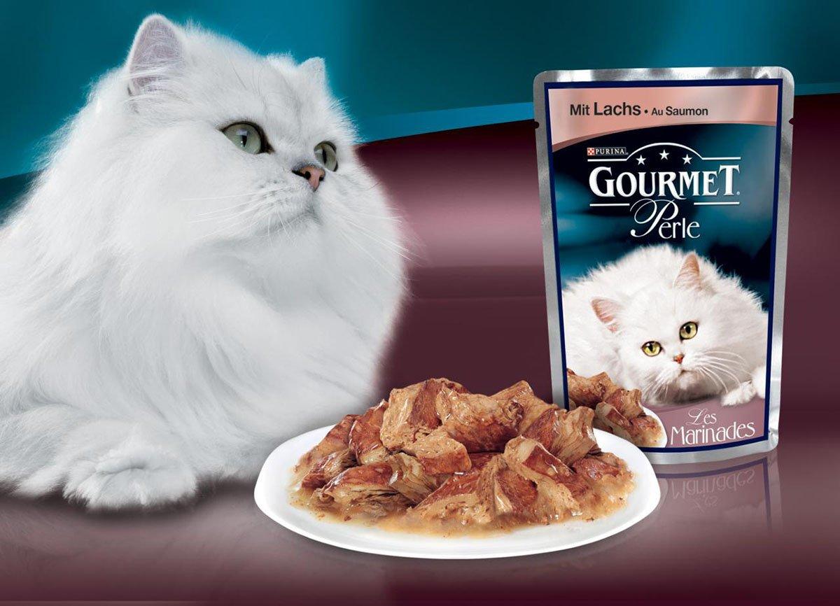 Кошачий корм.Все шуточки.